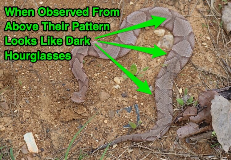 Copperhead Hourglass Pattern