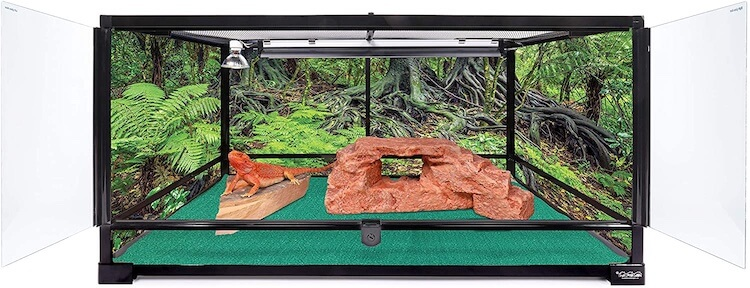 Carolina Custom Cages 50-Gallon Terrarium